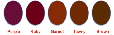 Red Wine Color Spectrum
