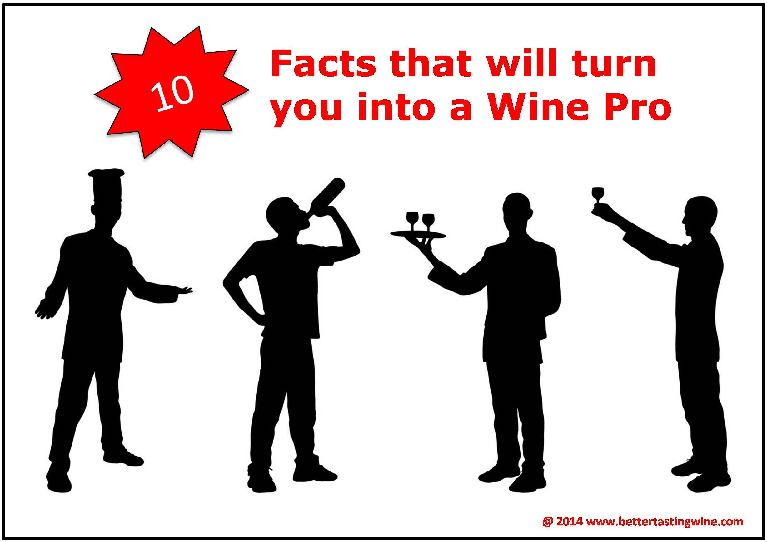 Ten Knowledge that will turn you into an instant wine pro